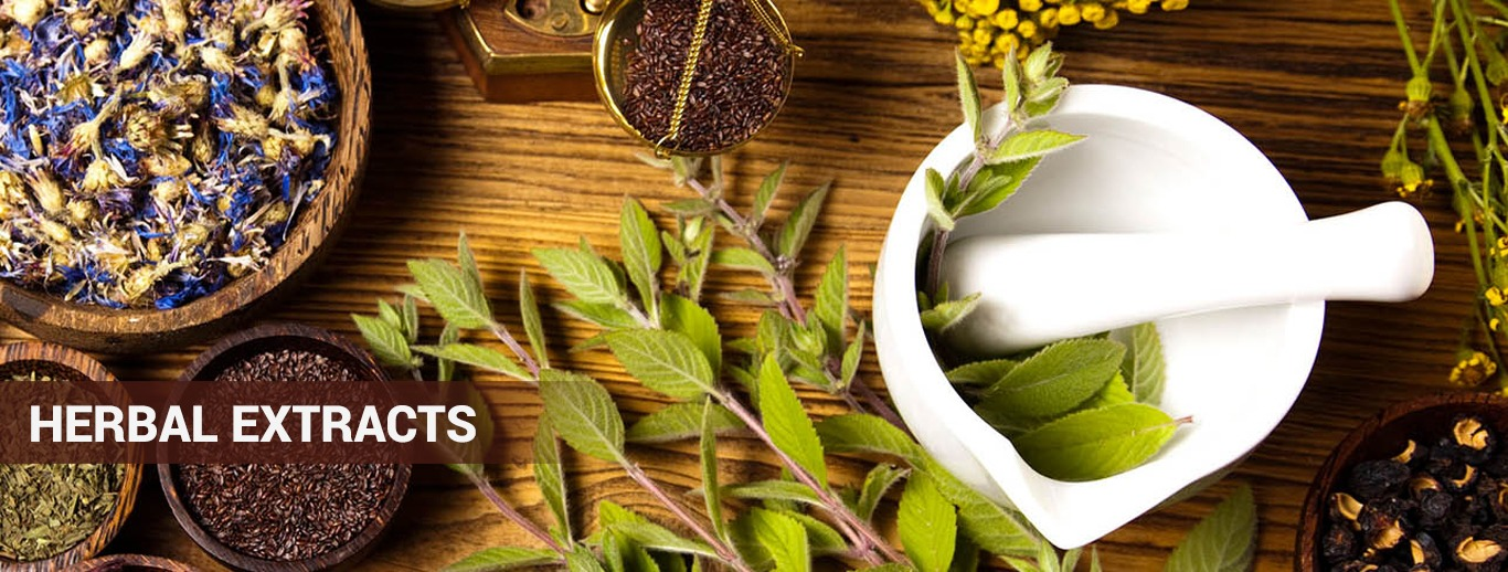 Herbal Extracts India | Herbal Extracts Manufacturers