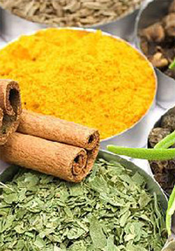 Herbal Extracts, Herbal Extracts Supplier in Ahmedabad