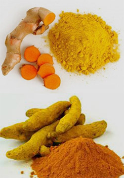Curcumin Extracts, Herbal Extracts India